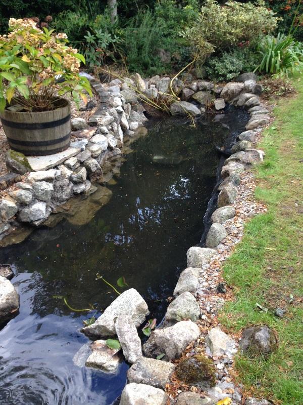 Rockworld water features installation for Cement fish pond