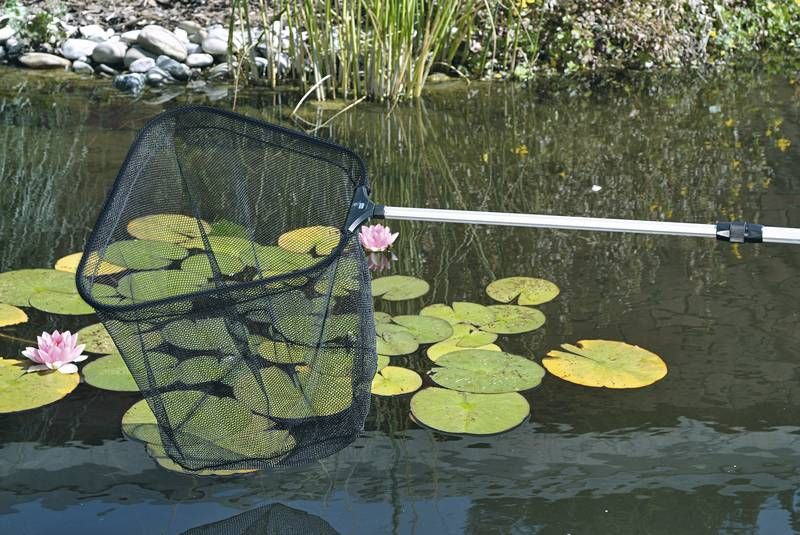 Fish pond net xl for Fish pond nets